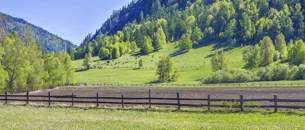 Montagne in primavera, paesaggio rurale con seminativi e boschi