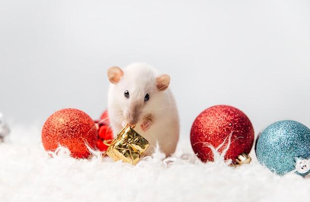 Topo nel concetto di carta di capodanno interno del nuovo anno