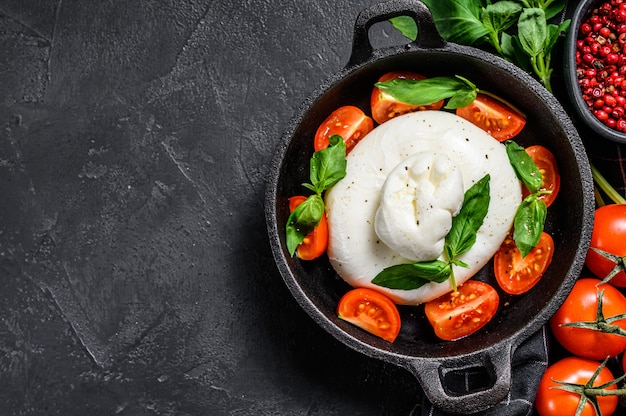 Mozzarella burrata con foglie di basilico