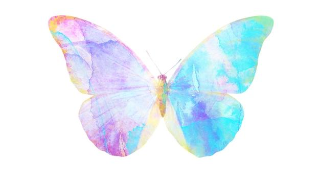 Farfalla multicolore dell'acquerello. insetto tropicale per il design. isolato su sfondo bianco