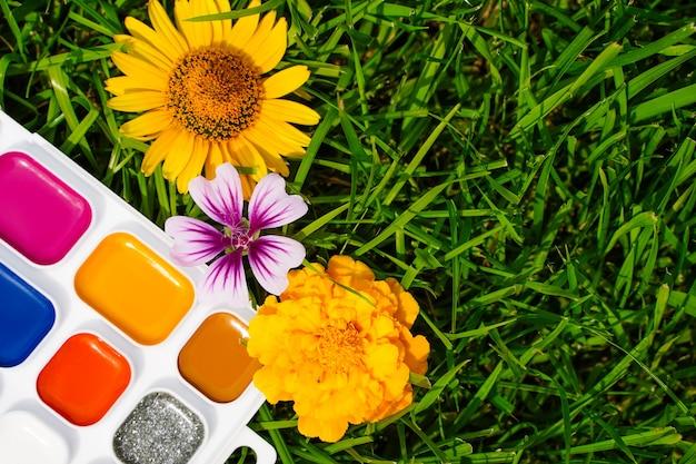 Vernici multicolori per disegnare e fiori i colori della natura