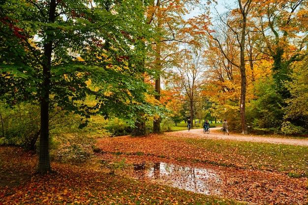 Giardino inglese di monaco di baviera englischer garten park in autunno monaco di baviera baviera germania