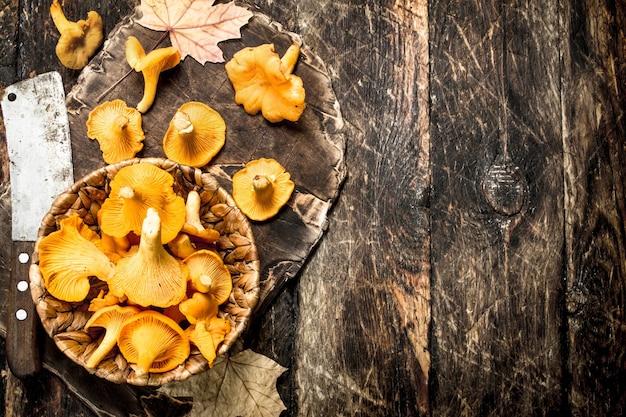 Funghi gallinacci nel cestello
