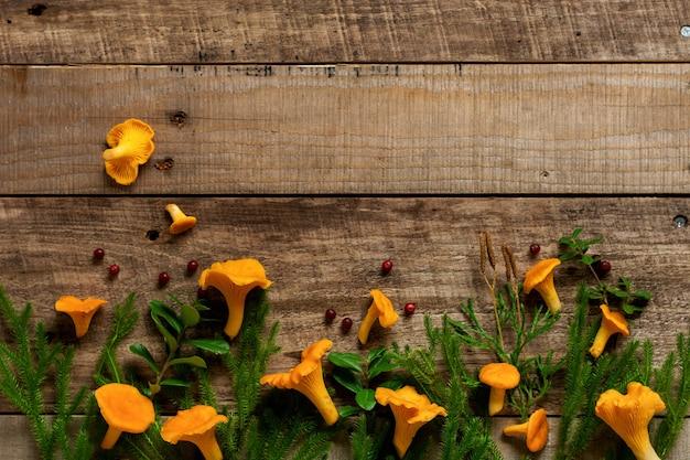Funghi finferli e muschio di bosco su un vecchio di legno. modello