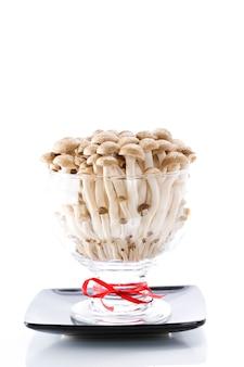 Funghi in vaso di vetro