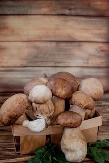 Funghi sulla superficie in legno