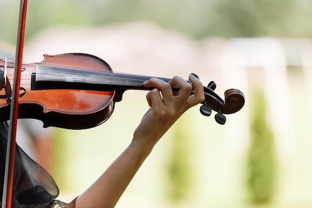 Musicista che si esibisce in un matrimonio all'aperto