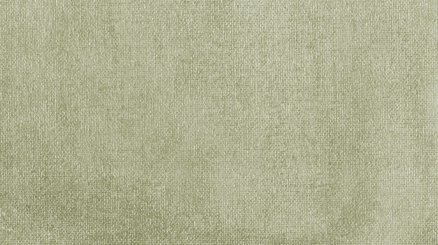 Acrilico tenue verde scuro e grigio strutturato dipinto su fondo astratto della tela fatto a mano organico