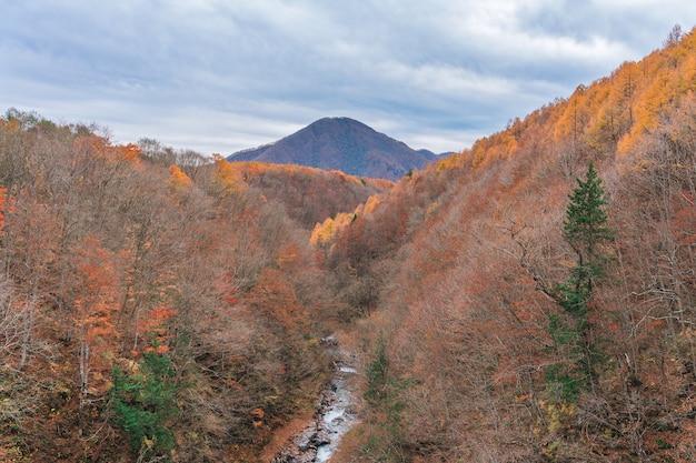 Paesaggio di panorama del ponte di nakatsugawa a fukushima in autunno giappone