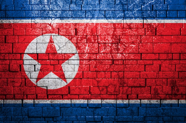 Bandiera nazionale della corea del nord sul muro di mattoni. il concetto di orgoglio nazionale e simbolo del paese.