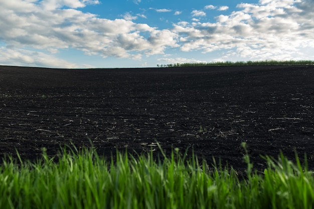 Sfondo naturale di terreni agricoli neri in una giornata di sole.