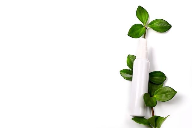 Bottiglia di crema cosmetica naturale con vista dall'alto dello spazio vuoto della pianta verde