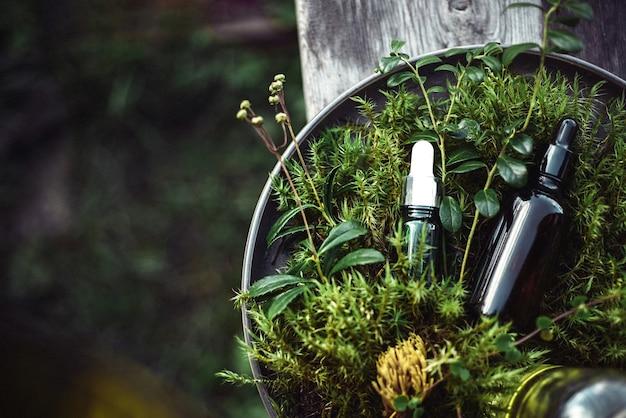 Cosmetici naturali per la bellezza del viso e del corpo su verde dalle piante
