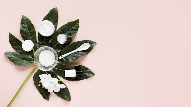 Concetto di cosmetici naturali con spazio di copia