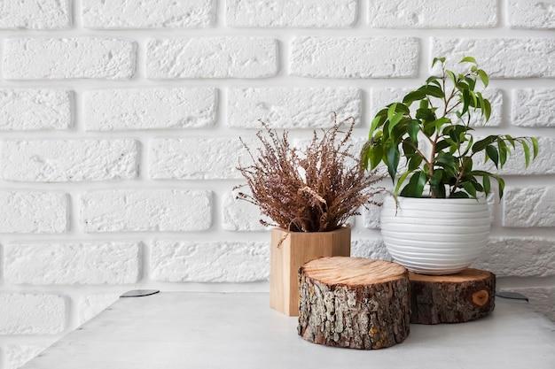 Arredamento naturale nell'interno della casa. pianta di ficus in un vaso e ceppo di albero sul fondo del muro di mattoni bianco.