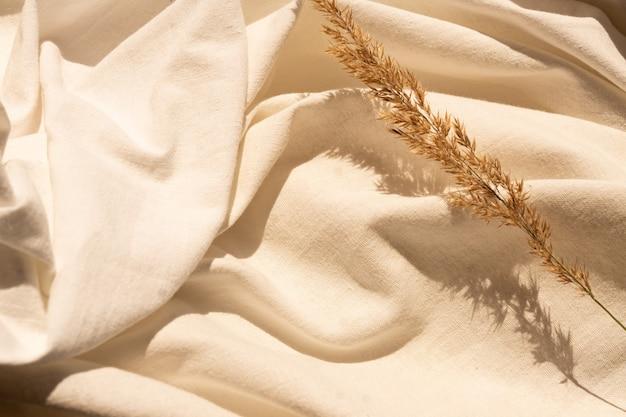 Fiori di canna essiccati naturali su materiale tessile di lino bianco strutturato. sfondo piatto con disposizione di fiori secchi. design organico. colori pastello.