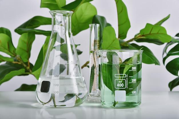 Ricerca di farmaci naturali, estrazione naturale organica e scientifica in vetreria, medicina alternativa alle erbe verdi, prodotti di bellezza per la cura della pelle naturale,