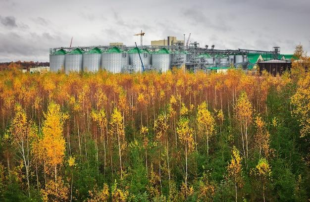 Serbatoi di stoccaggio del gas naturale e serbatoio dell'olio in un impianto industriale. vista sulla zona del terminal del servizio merci. pioggia nuvolosa e foresta autunnale