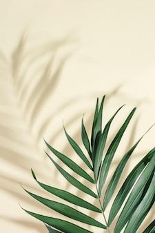 Foglia di palma verde naturale con parasole su superficie giallo chiaro