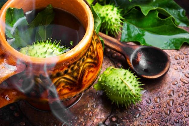 Medicina di erbe naturali, datura