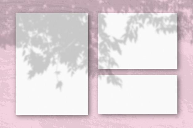 La luce naturale proietta le ombre da un ramo di apple in diversi fogli orizzontali e verticali di carta ruvida bianca