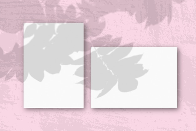 La luce naturale proietta le ombre da un ramo di rowan su fogli orizzontali e verticali di carta ruvida bianca