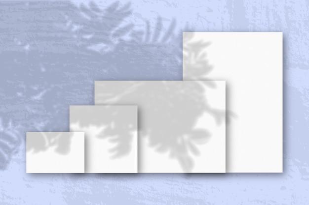 La luce naturale proietta le ombre di un ramo di rowan su diversi fogli orizzontali e verticali di carta ruvida bianca