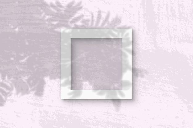 La luce naturale proietta le ombre dal ramo di rowan su una cornice quadrata di carta ruvida bianca
