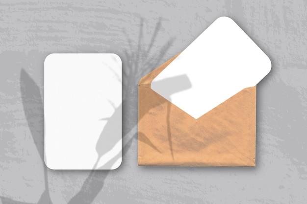 La luce naturale proietta le ombre di una spighetta su una busta con due fogli di carta