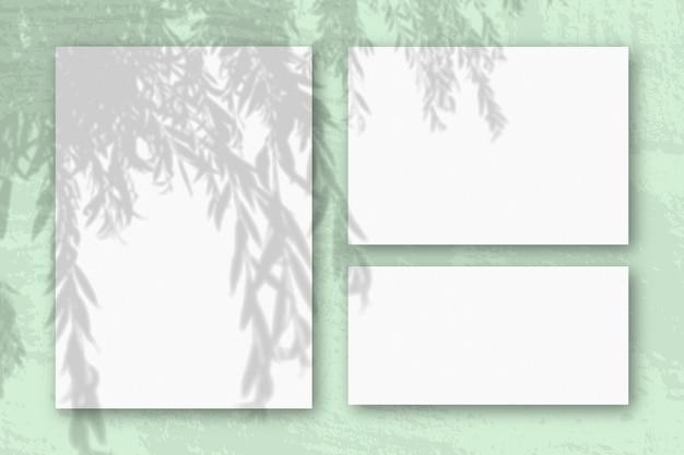 La luce naturale proietta le ombre da un ramo di salice su diversi fogli orizzontali e verticali di carta ruvida bianca