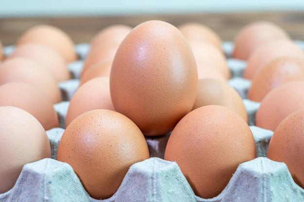 Uova di gallina biologica naturale di pollame in carta di cartone