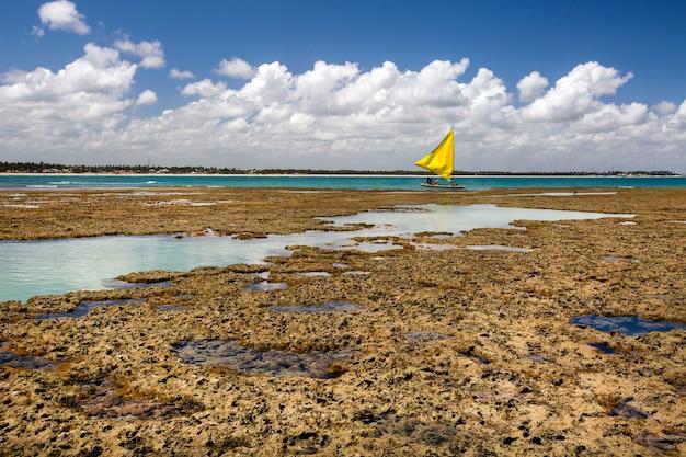 Piscina naturale a porto de galinhas, pernambuco - brasile. spiaggia brasiliana.