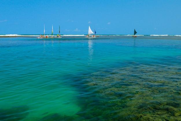 Piscine naturali con piccoli pesci sulla spiaggia di porto de galinhas vicino a recife pernambuco brazil