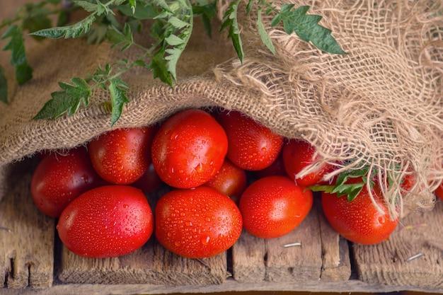 Concetto di prodotto naturale. pomodori prugna lunghi freschi in sacchetto di tela.