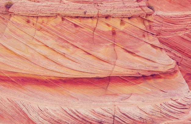 Trama di arenaria naturale. motivo naturale, colori corallo. concetto di consistenza naturale.