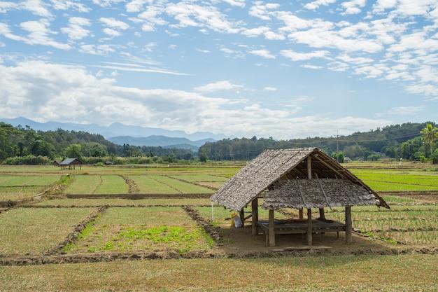Vista naturale con piccola capanna la sera a pai, in tailandia.