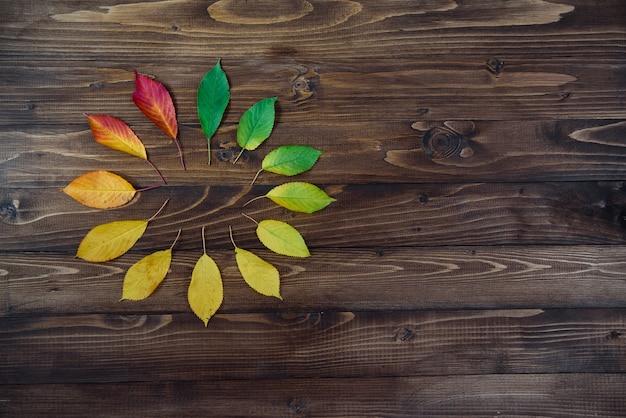Orologio naturale da foglie d'autunno. concetto di orologio. transizione delle foglie di autunno da verde a rosso su fondo di legno