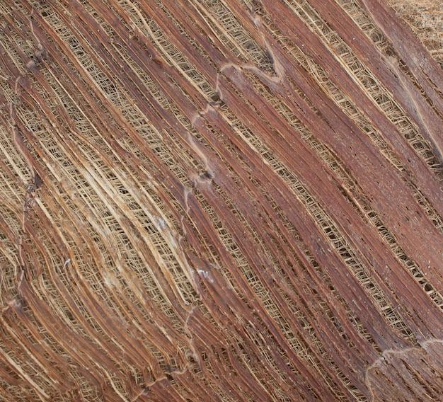 Struttura in legno naturale con colore marrone