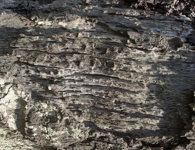 Struttura in legno naturale