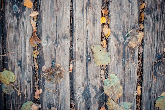 Struttura in legno naturale e foglie cadute gialle autunnali.