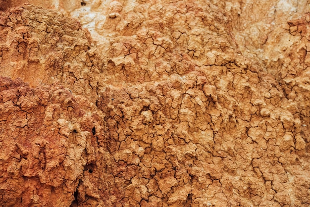 Sullo sfondo della natura delle terre aride incrinate. consistenza naturale del terreno con crepe.