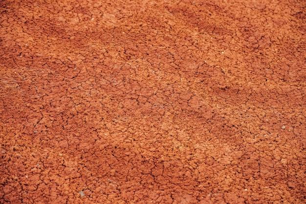Sullo sfondo della natura delle terre aride incrinate