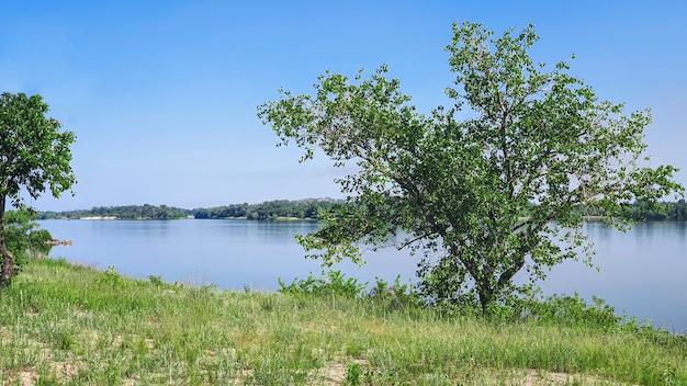 Natura e fiume vuoto. riflessione degli alberi nell'acqua. copia spazio.