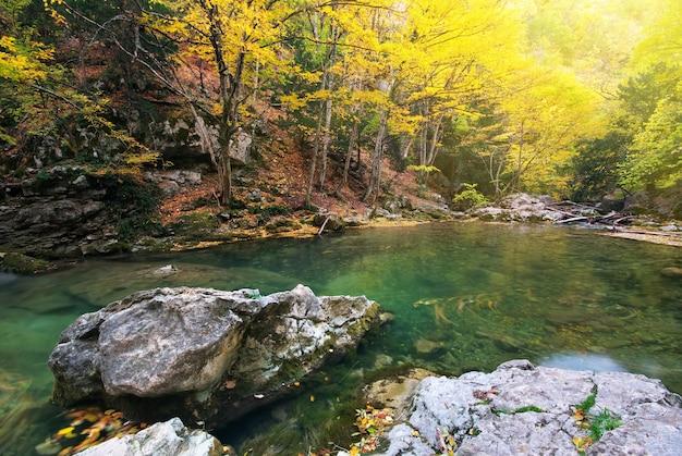 Paesaggio della natura del lago nella foresta di autunno.