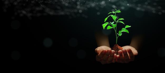 Tecnologia della natura etica risparmio dell'ambiente ecologia giornata della terra eco concept