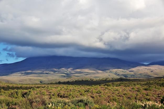 Natura del parco nazionale di tongariro in nuova zelanda