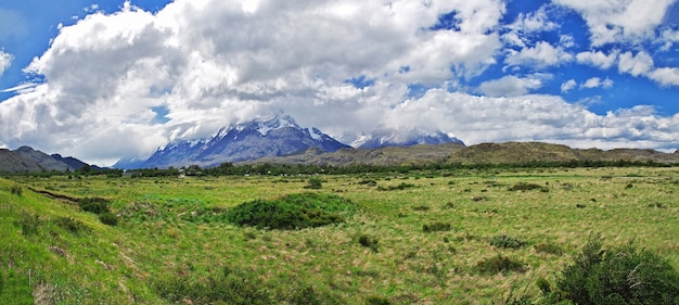 Natura del parco nazionale torres del paine in patagonia, cile