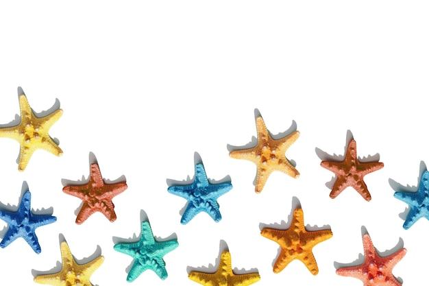 Scena nautica con stelle marine colorate su sfondo bianco felice umore luminoso ed estivo piatto lay