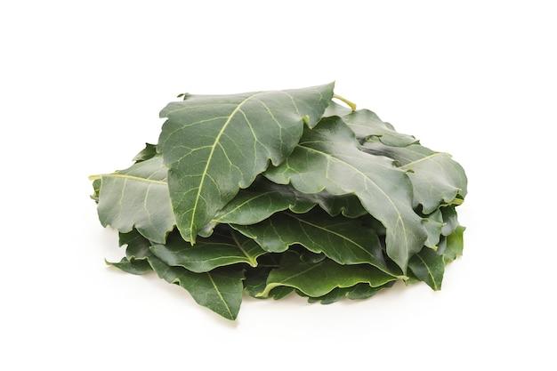 Neem o azadirachta indica, foglie verdi isolate ..