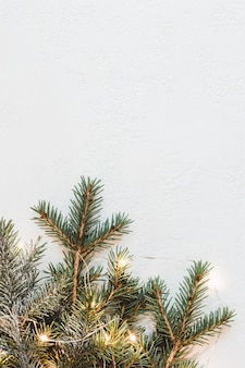 Composizione natalizia neutra di rami di abete e ghirlanda di luce dorata su sfondo bianco.